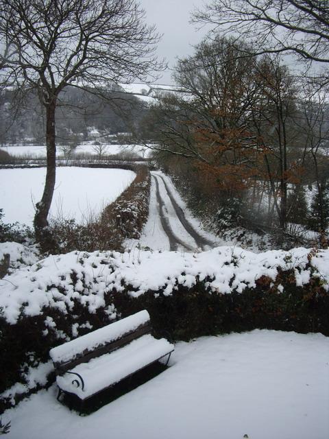 snowy_lane
