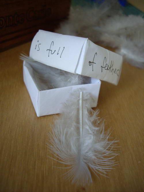 tiny-feathers4