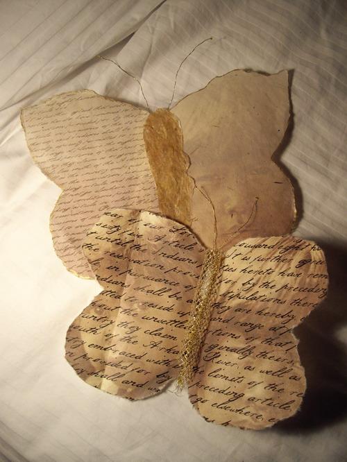 Butterflies_comanche1