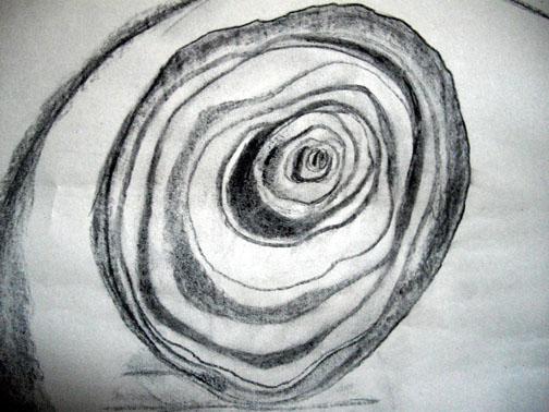 Onion, A5