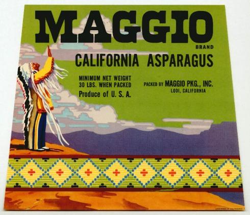 asparagus_maggio