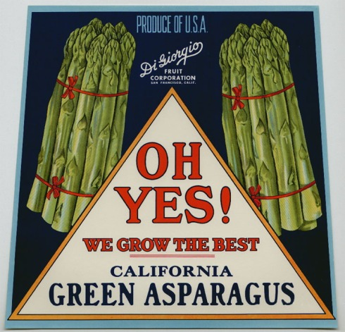 asparagus_ohyes