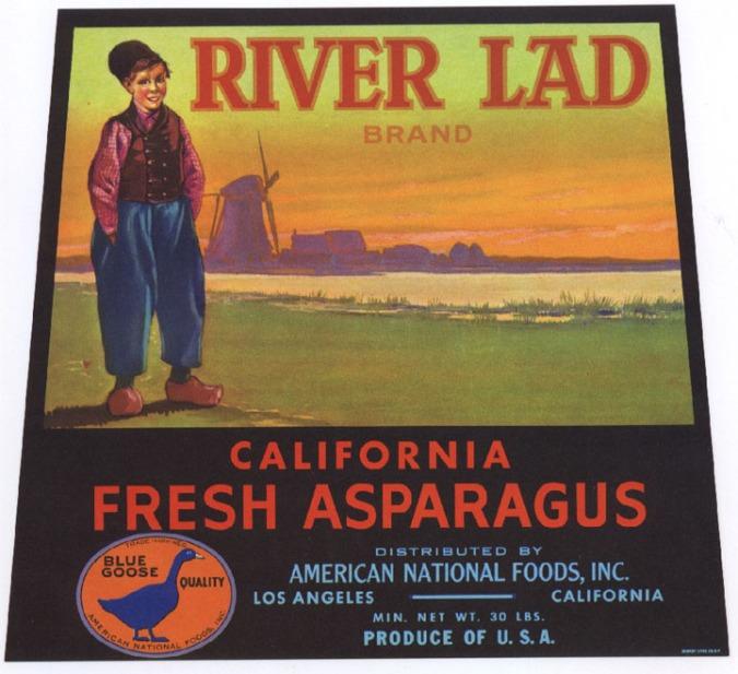 asparagus_riverlad