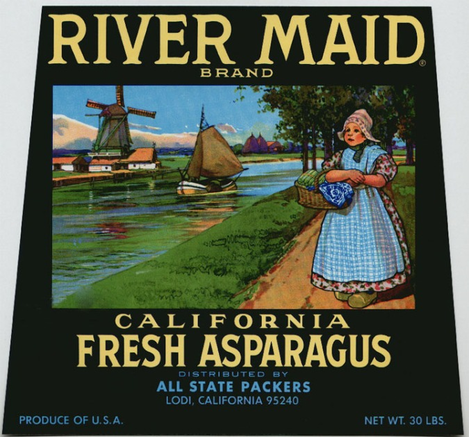 asparagus_rivermaid