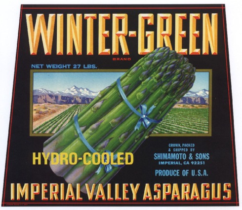asparagus_winter-green