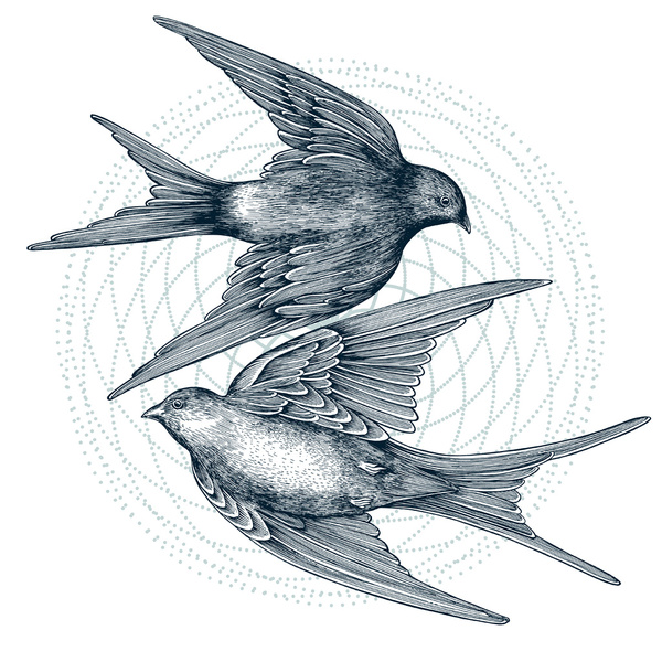 two_swallows