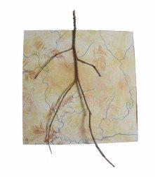 Found twig, oil pastel